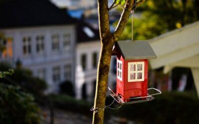 Mangler du liv og farver i din have?